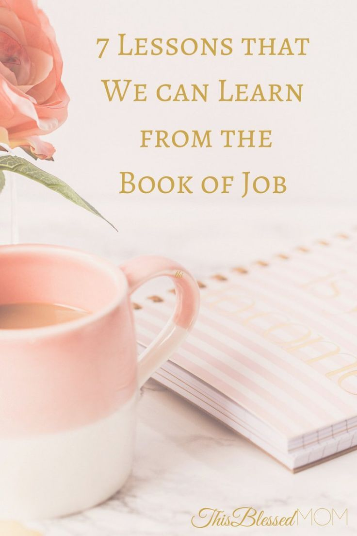 7 Lessons From The Book of Job Book of job, Job bible