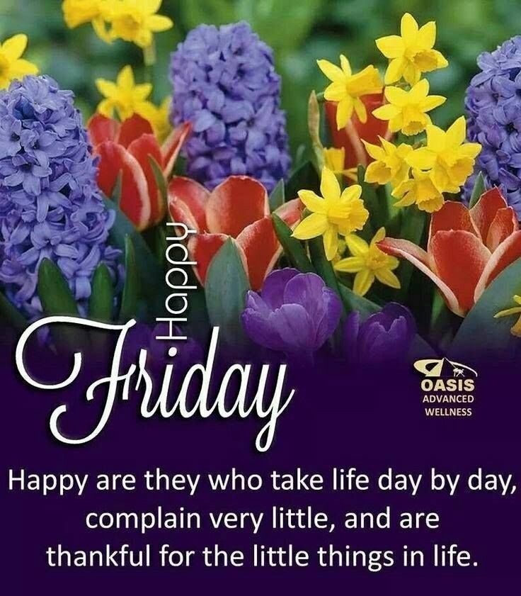 Happy Are They Who Take Life Day By Day friday happy friday friday quotes and sayings #fridayquotes