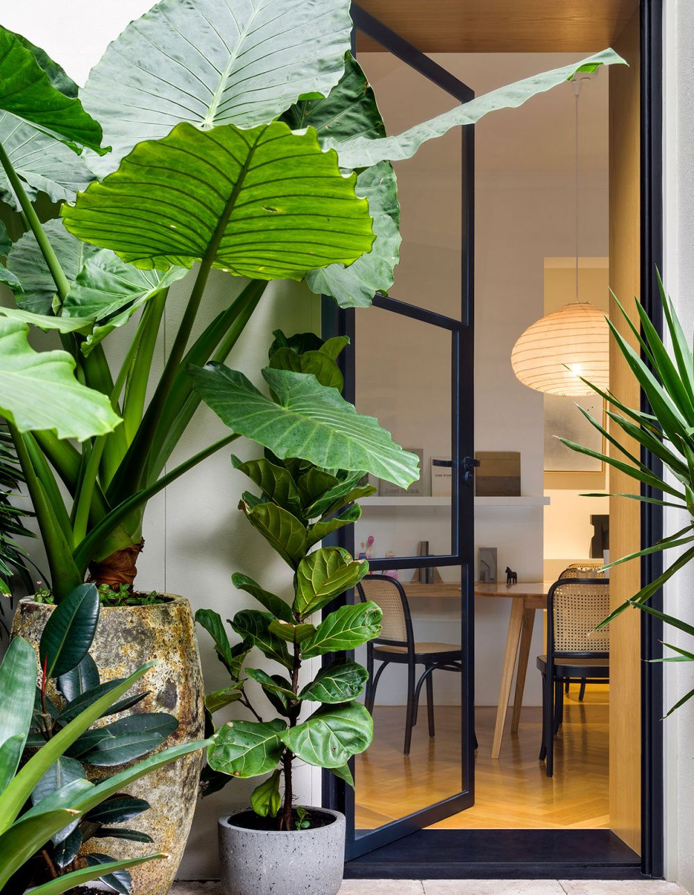 Brcar Morony Architecture Transforms A 1970s Sydney Apartment