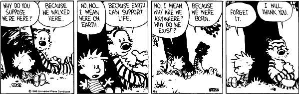 Image result for calvin and hobbes why are we here