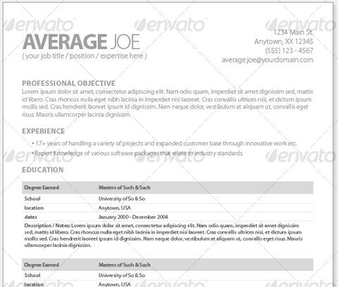 Slick And Stylish Resume