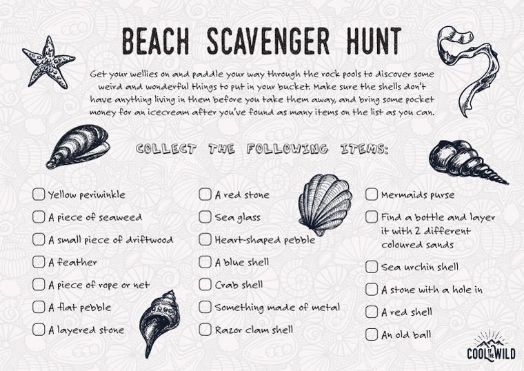 Cool Scavenger Hunt Ideas Your Kids Will Love in 2018 | kids beach ...