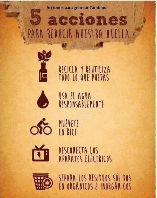 Acciones Para Reducir Nuestra Huella Eco Tip Salud Y Medio