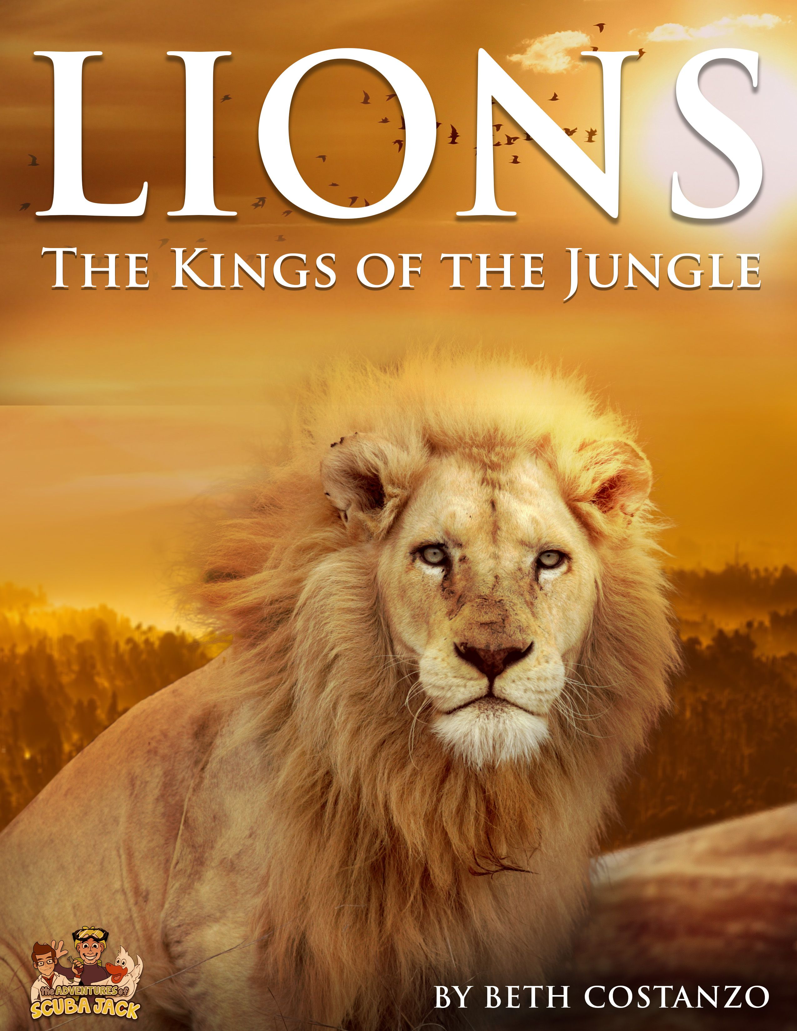 Lion Booklet For Kids In