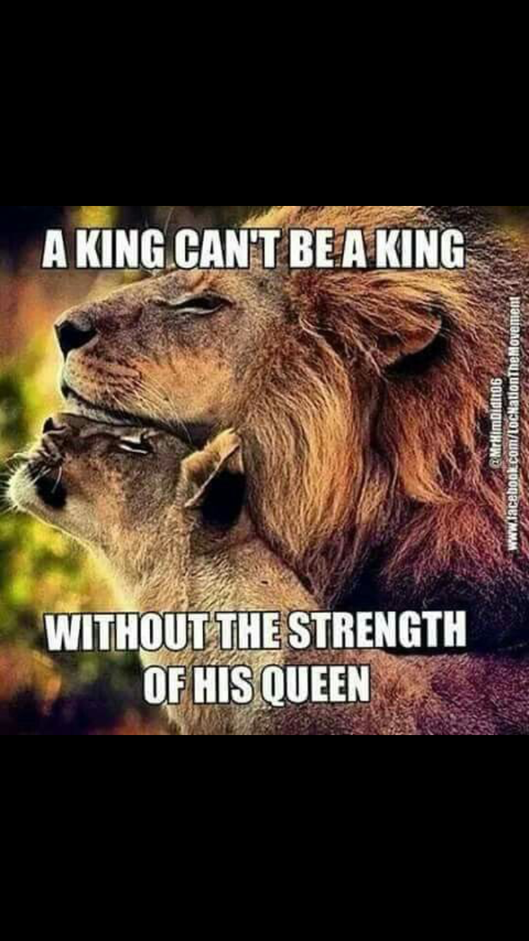 Pin By Lavinia Firestone On Lioness Quotes Lion Quotes Lion Love Lions