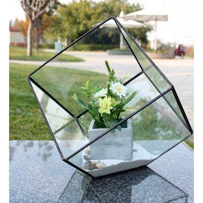 "WGVInternational Heptahedron Tilted Cube Terrarium Size: 11.5"" H x 12"" W x 12"" D"