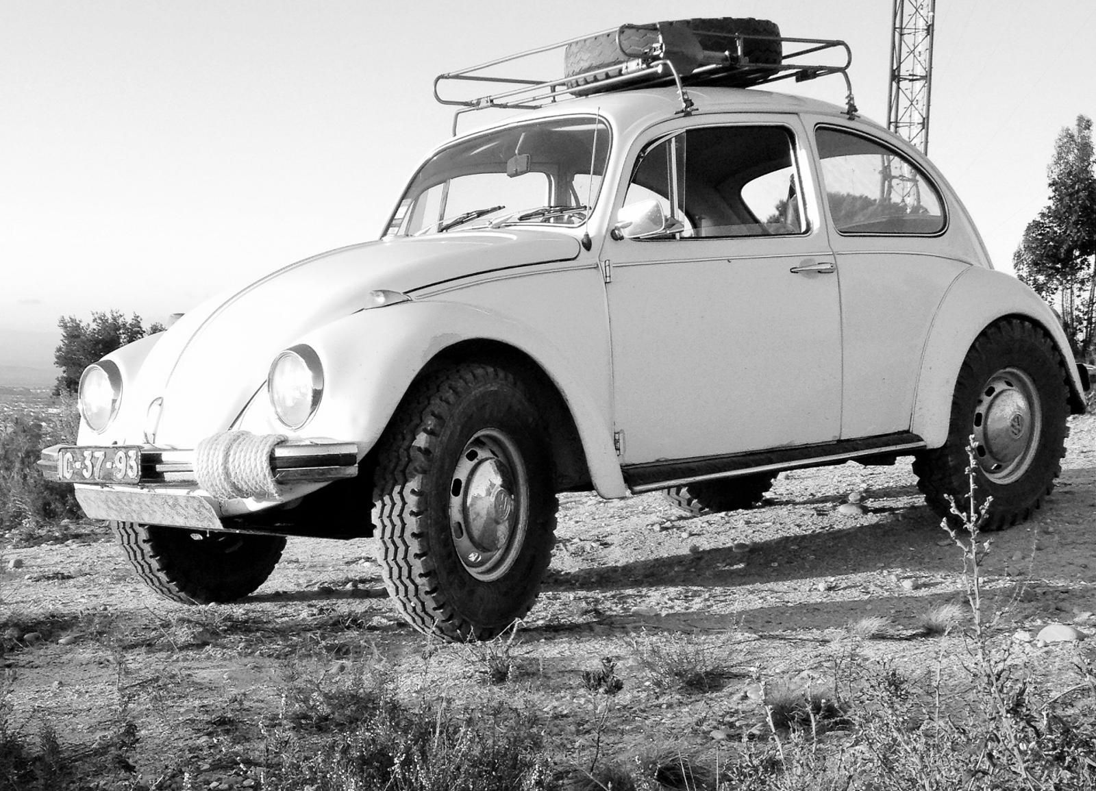 Beetle Off Road Google Search Volkswagen Vw Baja Bug
