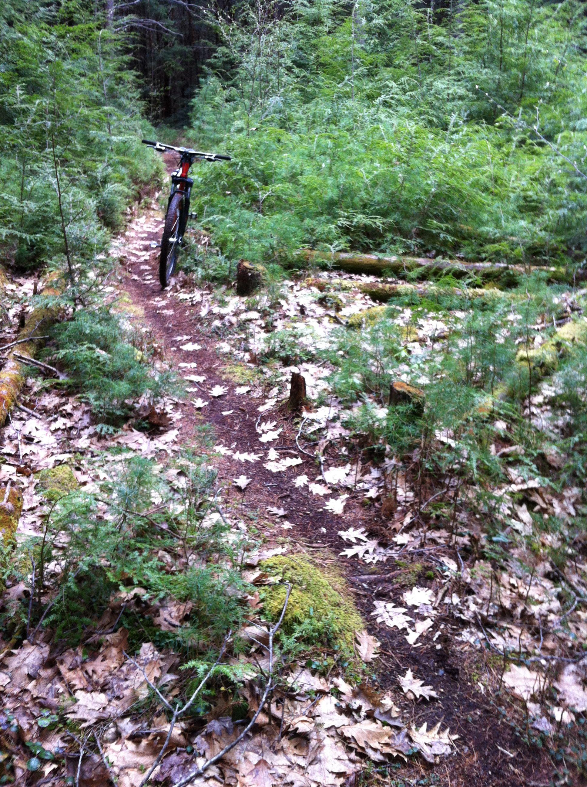 Bikes In Keene Nh Keen Nh Trail Keen Bikes