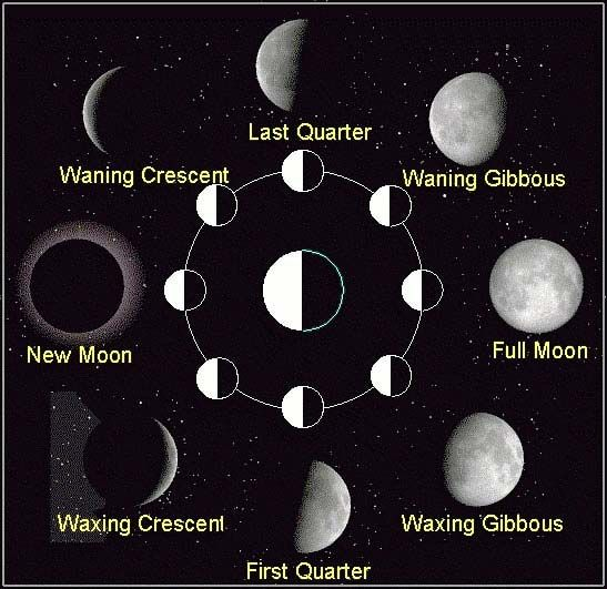 Learn More About The Phases Of The Moon With This Useful Moon Phases Diagram The Phases Include New Moon Waning Crescent Las Neumond Mondkalender Mondphasen