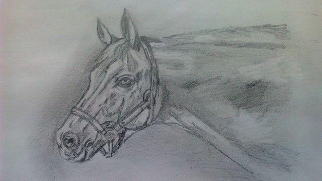 رسم راس حصان بالقلم الرصاص