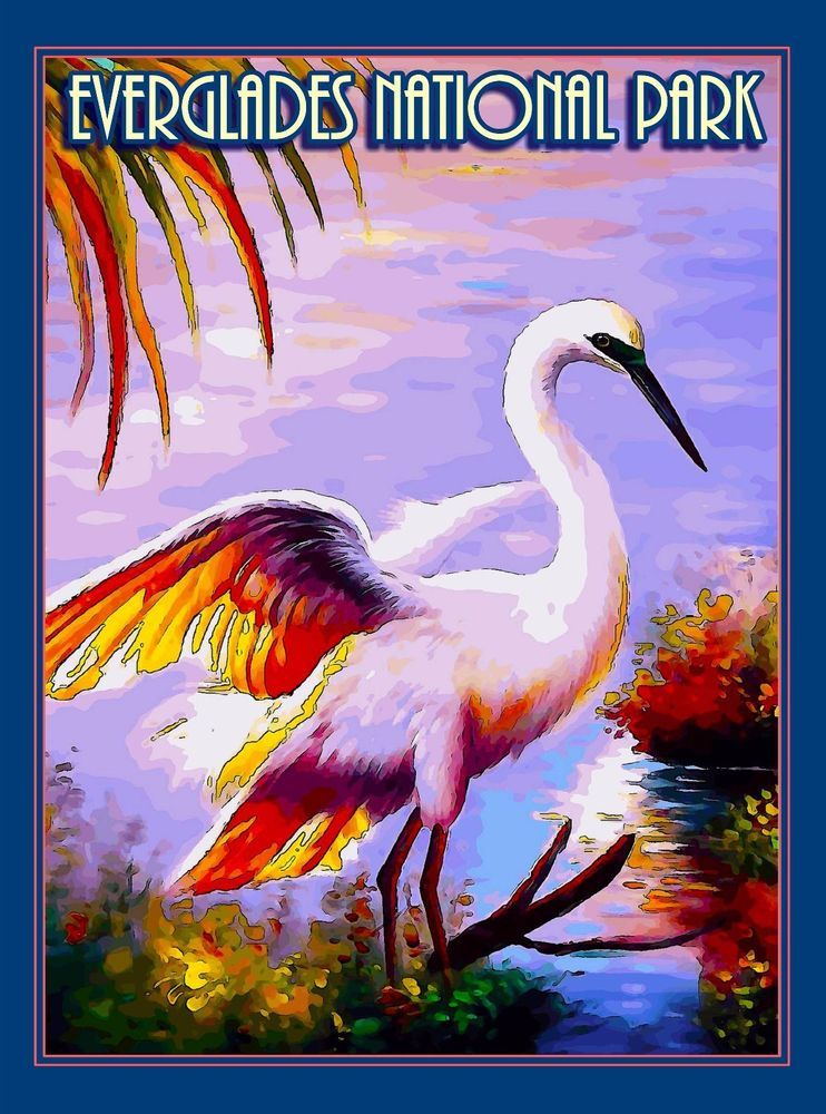 1c3145c96fa Egret Bird Everglades National Park Florida Travel Advertisement ...