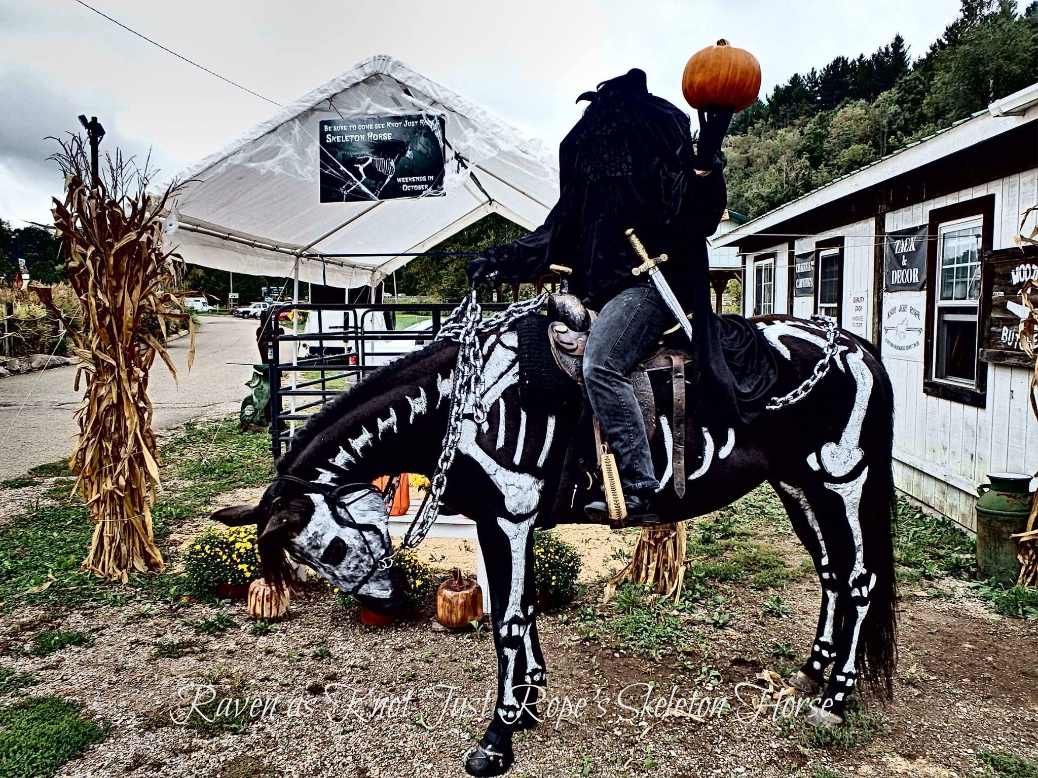 headless horse man and skeleton horse | halloween | pinterest