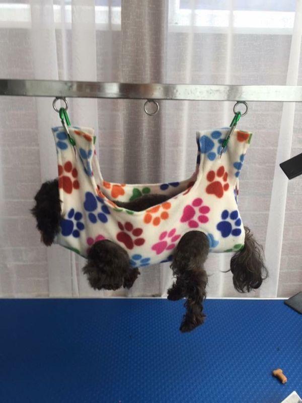 Teacup Calming Cradle Grooming Hammock Dog Hammock Puppy Grooming Dog Grooming Shop