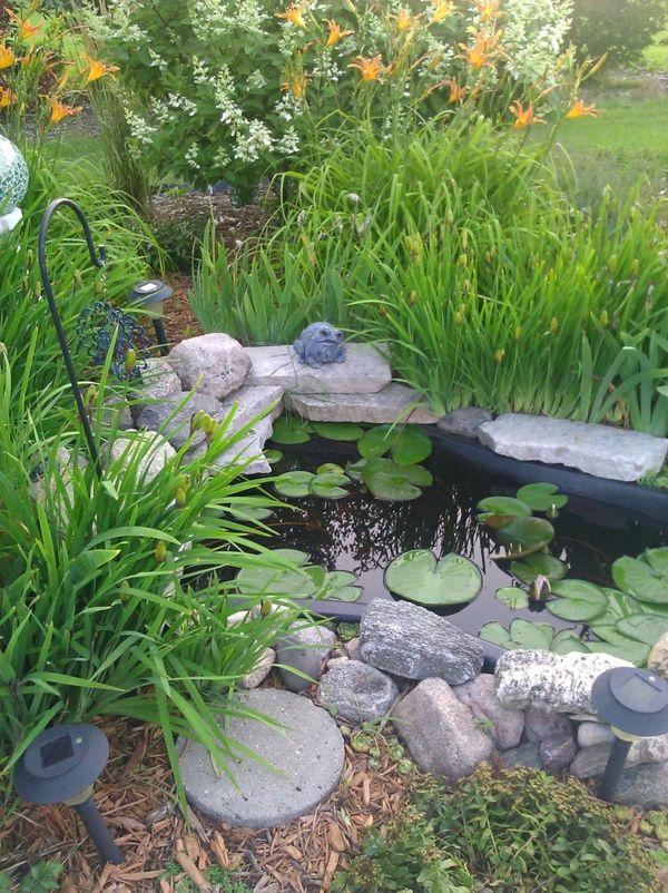 Wasserpflanzen in ihrem garten sorgen f r eine einmalige idylle garten pinterest garten - Gartengestaltung bauernhof ...