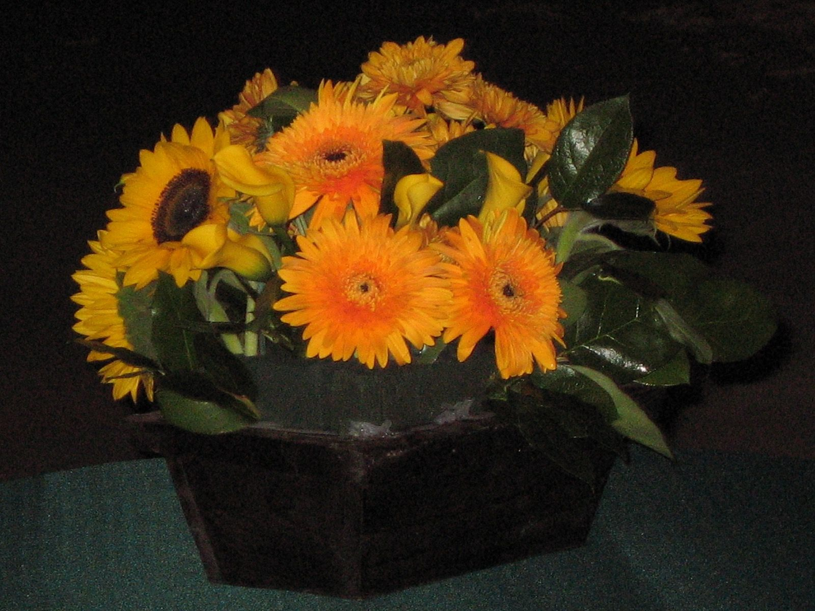 Gerbera daisies and sunflowers flowers by candlelight pinterest