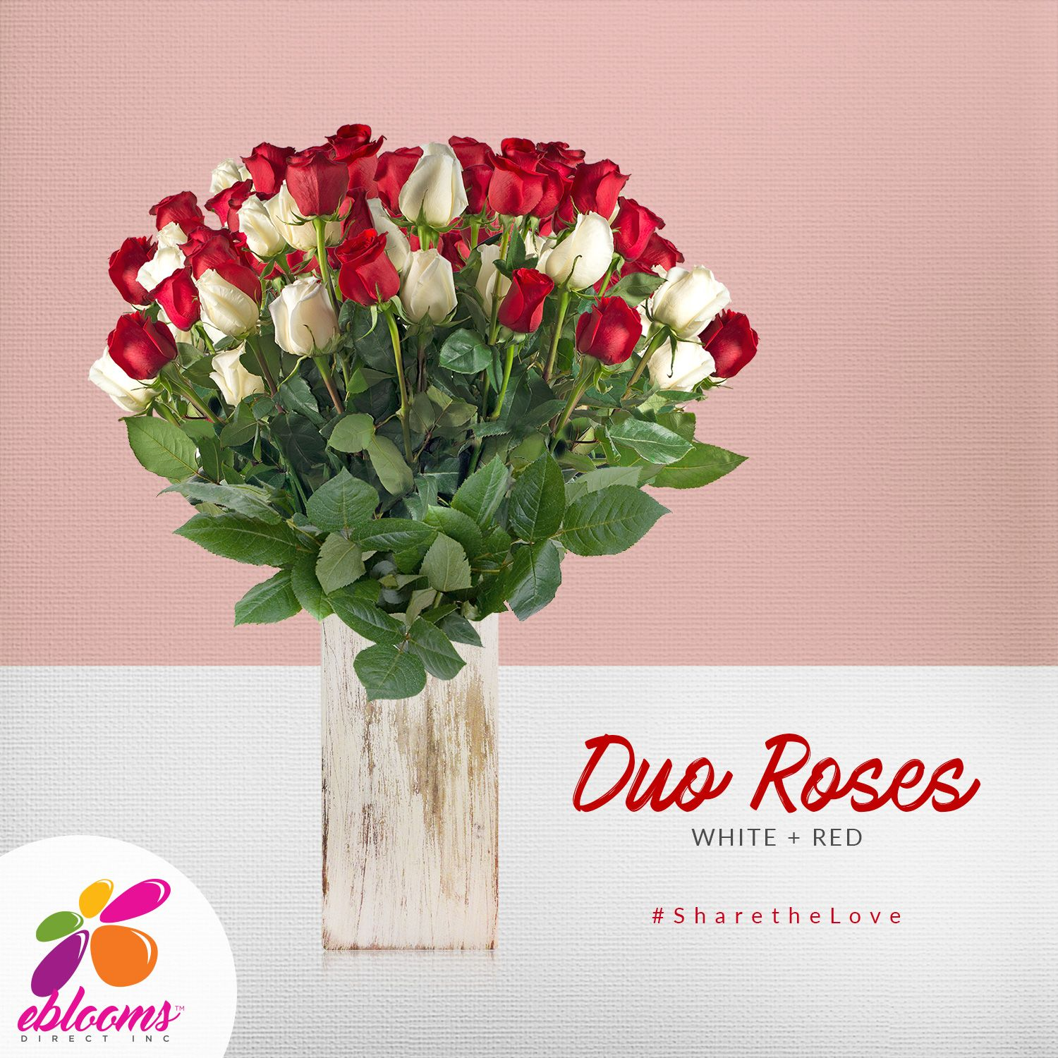 Rose Duo Red and White   Support small business, Wedding season and ...