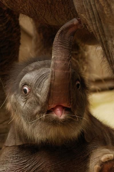 My face when my alarm goes off:)