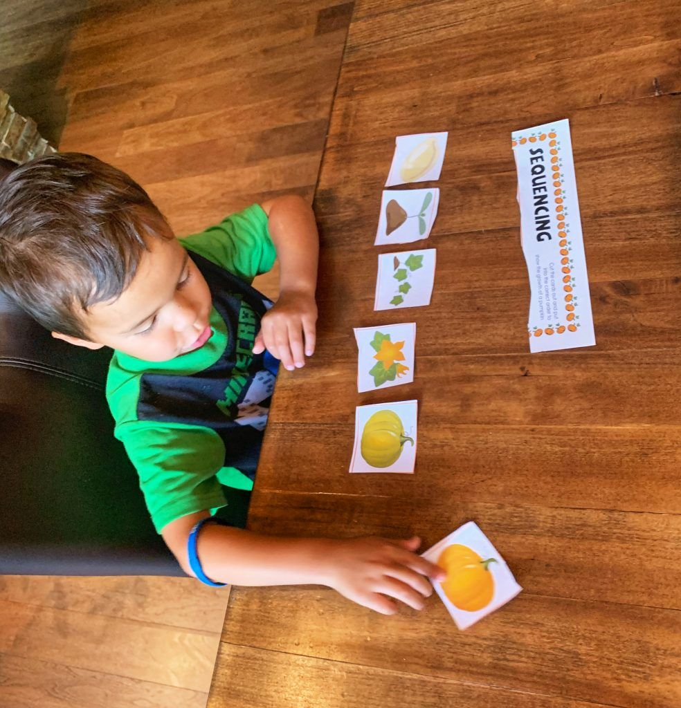 Sequencing Activity Sequencing Worksheet Coding for