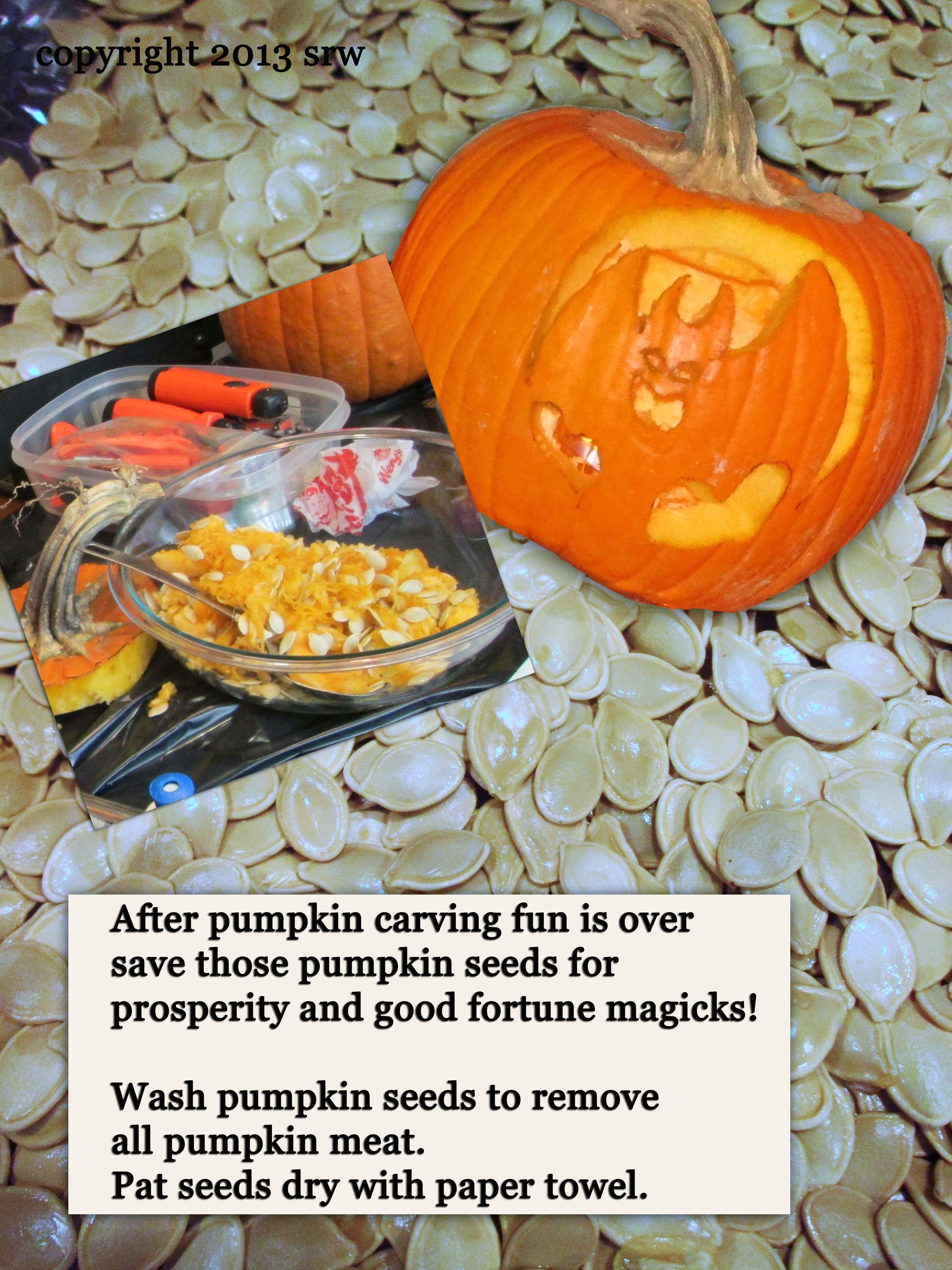Done carving your pumpkin?  Hey!  The fun isn't over yet!