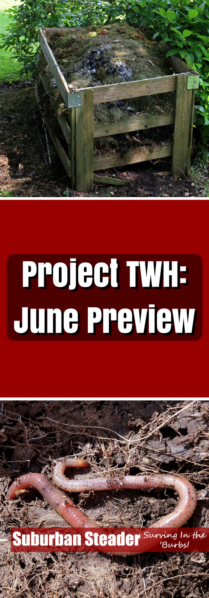June will be another hectic & eclectic month at the Suburban Steader Homestead. The June Preview of Project TWH describes the topics we'll hit in June.