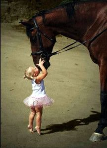 I think I'm in love with this picture!!  A horse and a little girl in a tutu! Perfect! :~)