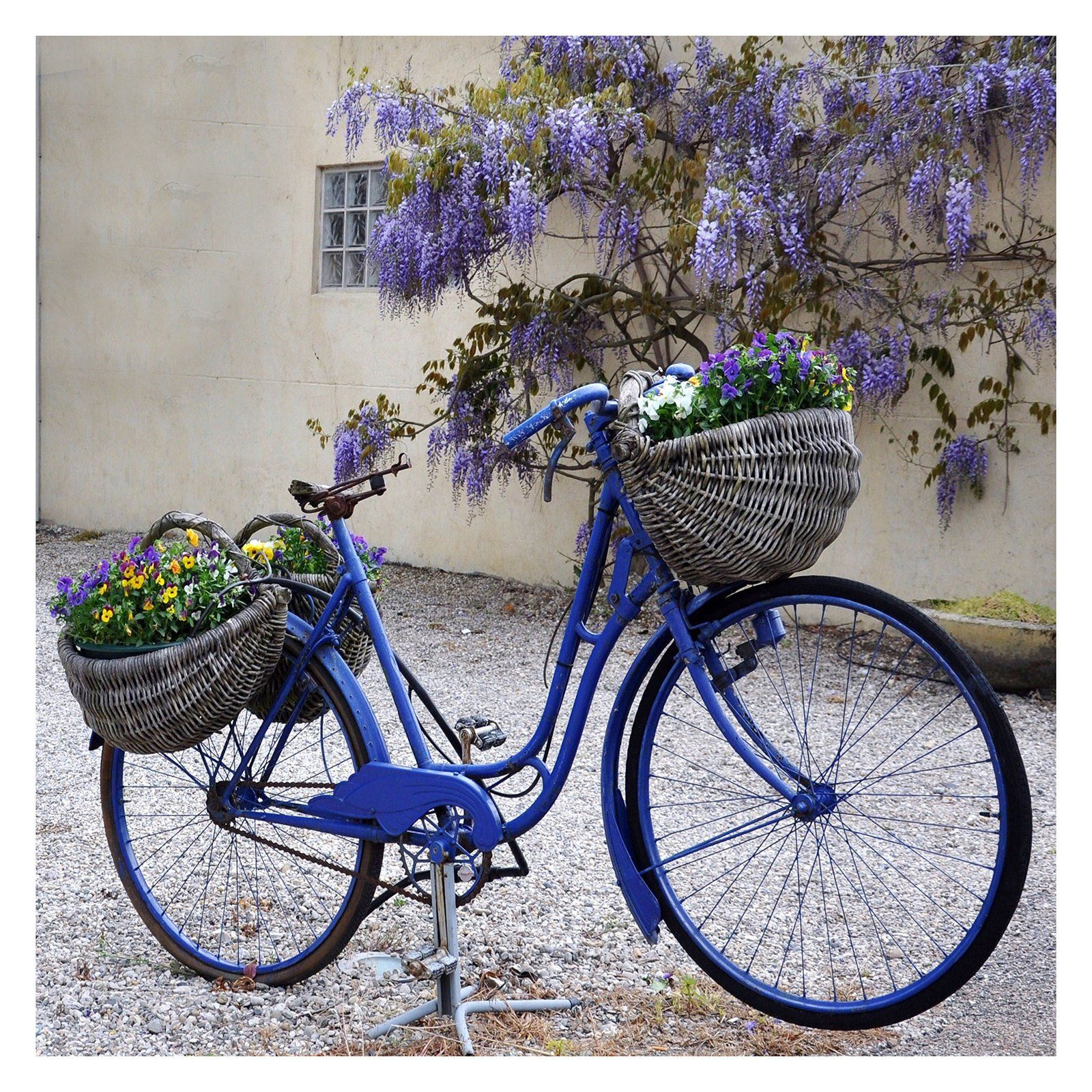 West Of The Wind Blue Bike Outdoor Canvas Wall Art   79055 24
