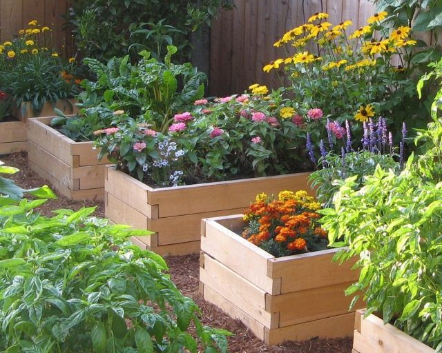 kleingarten zierpflanzen gemüse holz hochbeete bauen | Garten ...