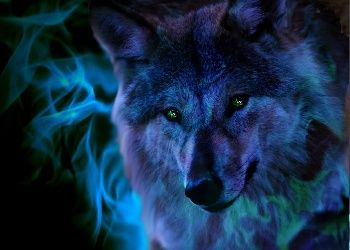 3d Wolf Screensavers Download The Free Fire Wolf Wallpaper Download Free Screensavers