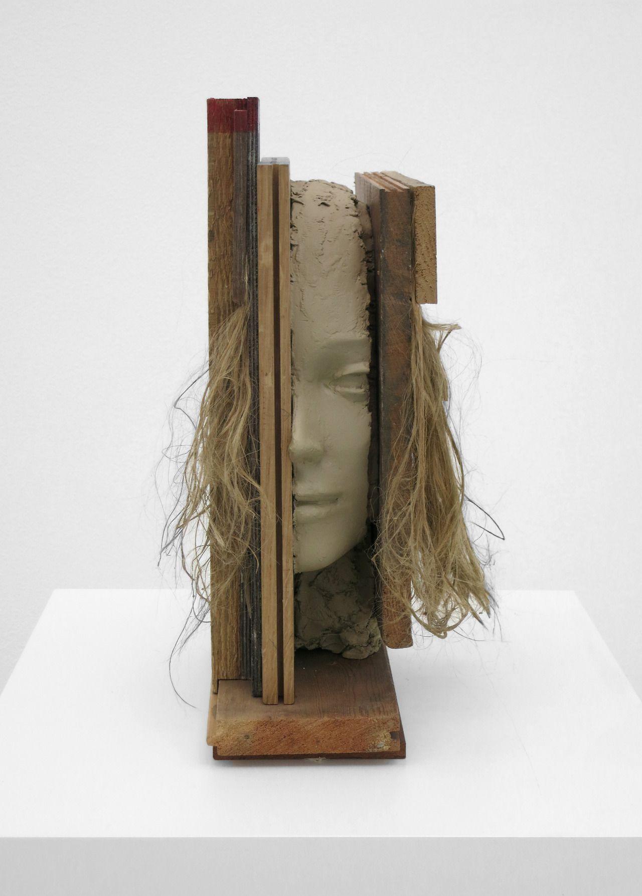 Mark Mandersat the 55th Venice Biennale Dutch Pavillion(2013)