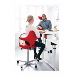 Sit Stand Office Chair Hag Capisco 8106 With Images Ergonomic