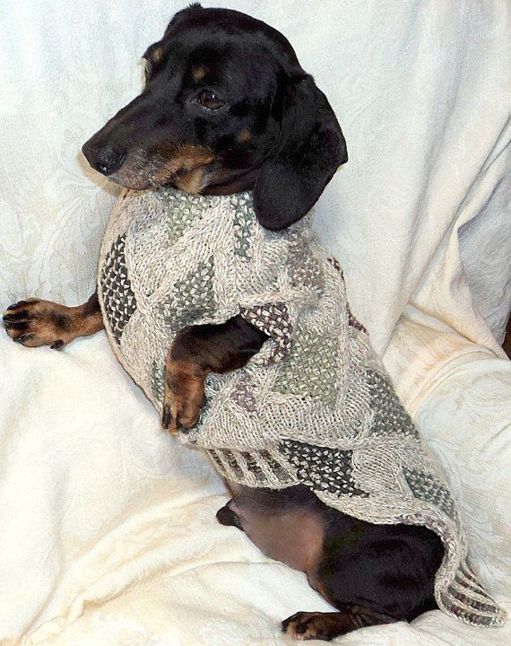 Sewing Pattern for Dachshund Sweater & Snood by by WarmWeenies on ...