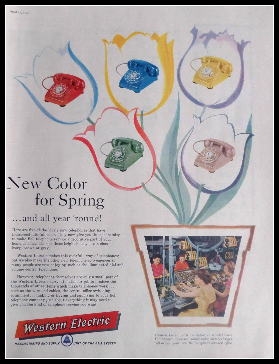 Western Electric Colors Payphone Wiring Diagram 1119x1457
