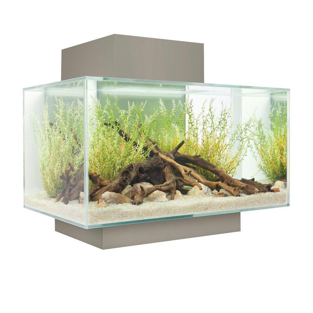 Freshwater aquarium fish capacity - 6 Gallon Fluval Edge Aquarium Kit