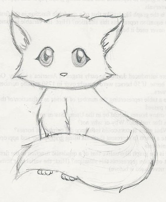cute kitten drawings drawings pinterest drawings cute