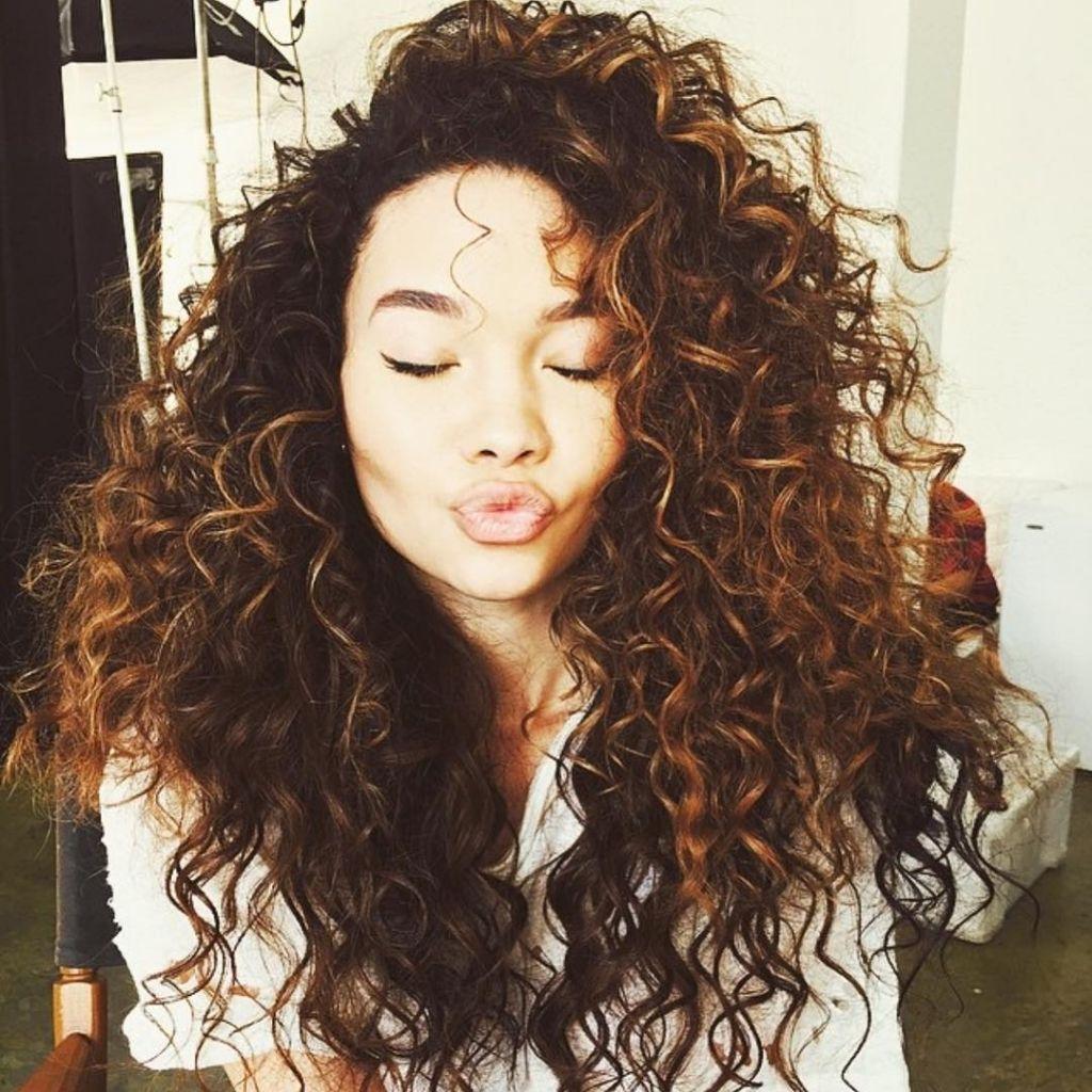 Caramel highlights curly hair 15 luscious long hairstyles for caramel highlights curly hair 15 luscious long hairstyles for curly hair hairstyle guru photo caramel pmusecretfo Images
