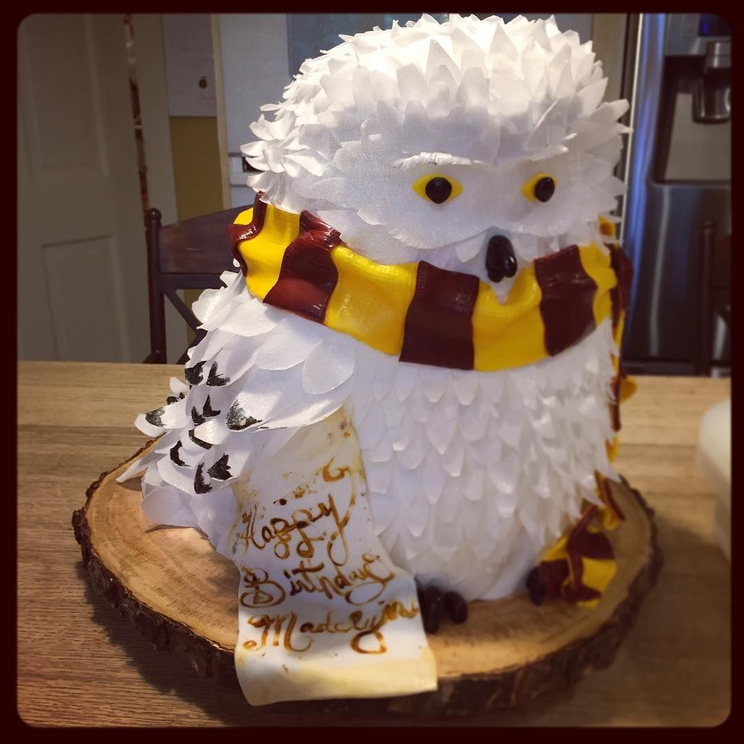 Image may contain 1 person Harry potter birthday cake