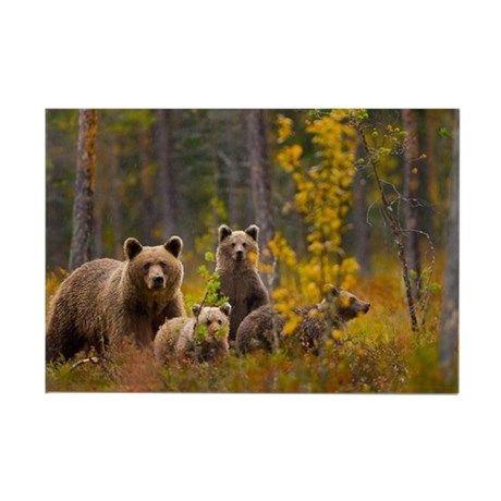 bears Rectangle Magnet on CafePress.com