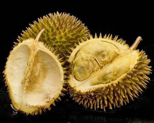 "Durian Revered in Southeast Asia as the ""king of fruits,"" durian is relatively unknown in the United States. Famed naturalist Alfred Russel Wallace (who, like Darwin, independently discovered the theory of natural selection) described its flesh as ""a rich custard highly flavoured with almonds."""