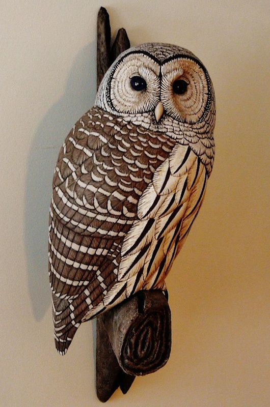 Life sized barred owl carving artwork by tim mceachern
