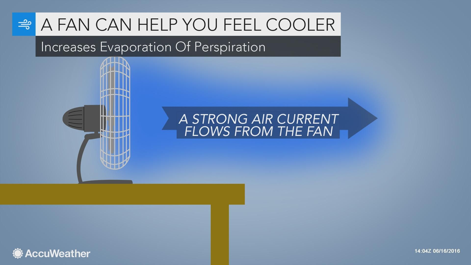 Accuweather Weatherwhys The Strong Flow From A Fan Cools You Off