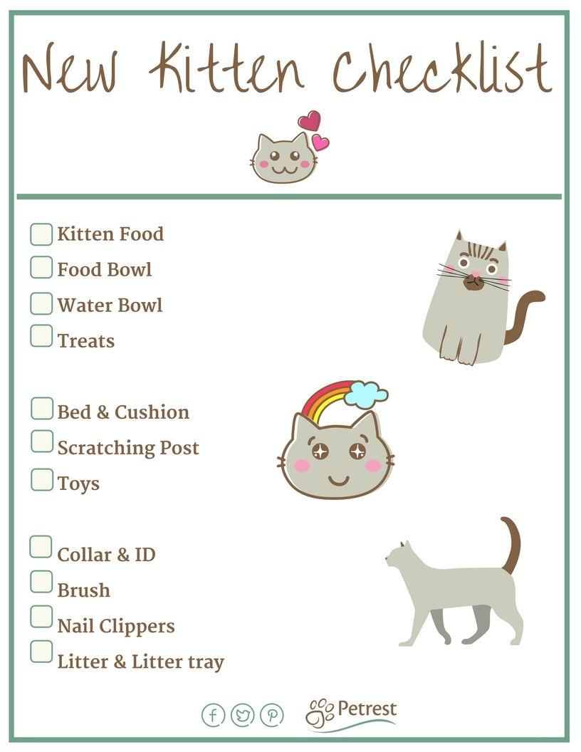 New Kitten Checklist Petrest Kitten Checklist Kitten Care Cat Care Tips
