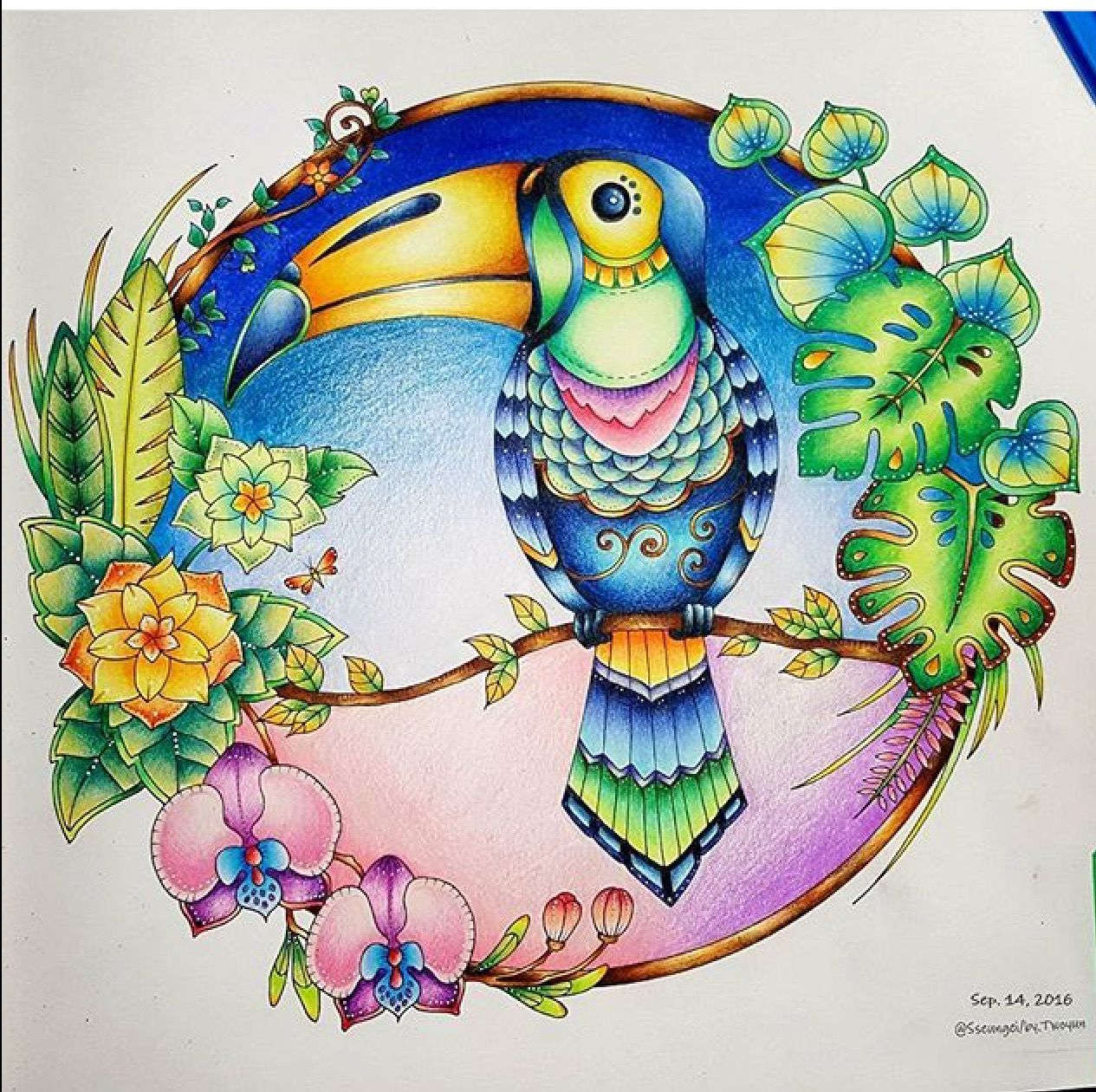 South korea coloring book - Colored Pencil Tutorial Adult Coloring Coloring Books