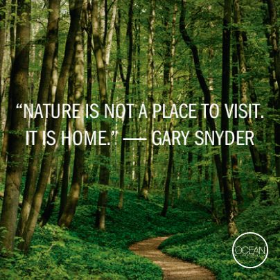 Nature Is Not A Place To Visit It Is Home Gary Snyder Nature Quotes Hiking Quotes Nature