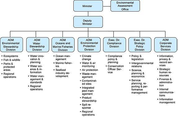 Business Management Organizational Structure Work Organizational