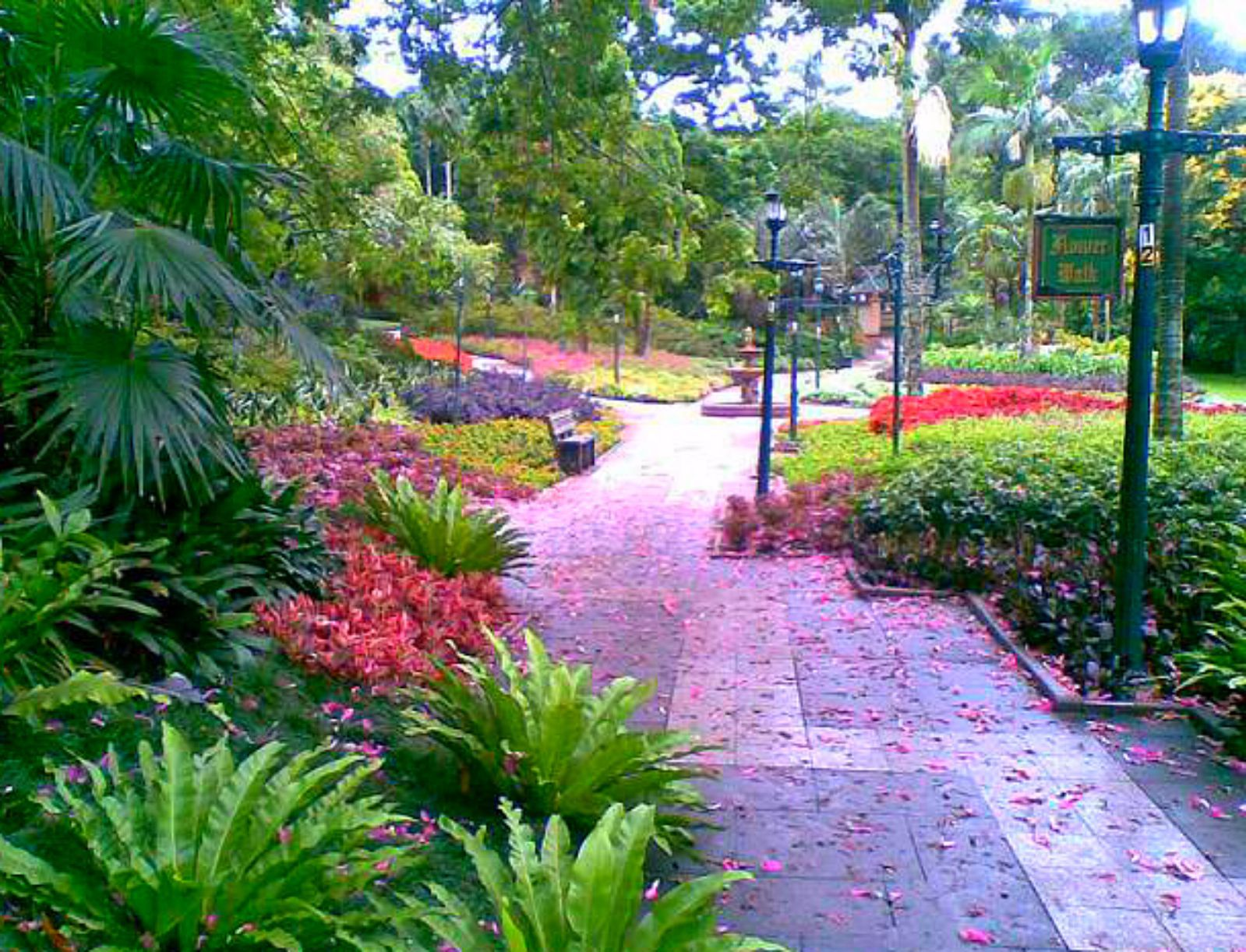 The Durban Botanic Gardens is currently the oldest surviving botanic ...