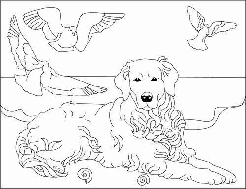 Pin Di Eva Gubik Su Animal Coloring Disegni Disegni Da Colorare Immagini
