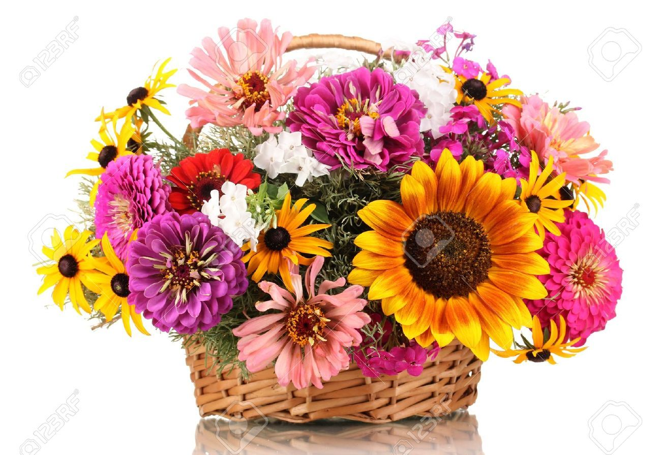 14906757 beautiful bouquet of bright flowers in basket isolated on 14906757 beautiful bouquet of bright flowers in basket izmirmasajfo Gallery