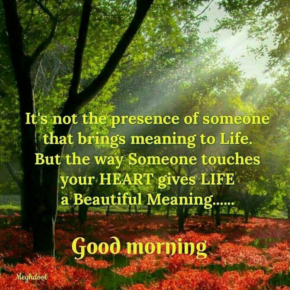 Good Morning Positive Quotes Pinlatha Menon On Good Morning  Pinterest  Night Quotes