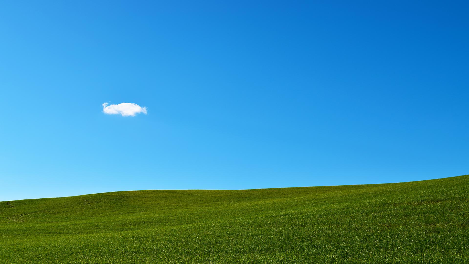 Green Grass And Sky Similar To Windows Xp Wallpaper
