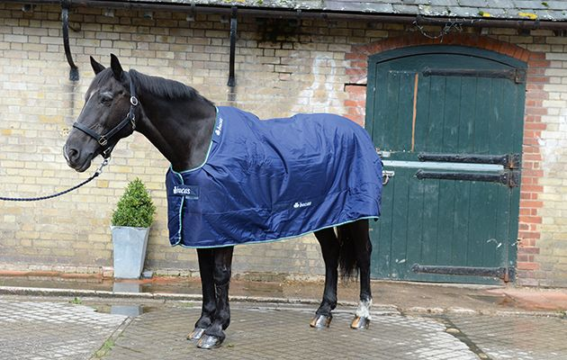 Review Of Turn Out Rugs Rug No1 Bucas Smartex Medium At Wild Farm Equestrian Near Watford In Hertfordshire Uk On 1st September 2016